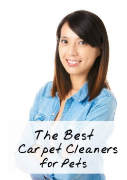 Best Pet Carpet Cleaner: Top 6 2020