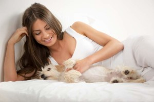 Dog on matress