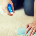How To Deodorize Carpet Five Ideas That Really Work