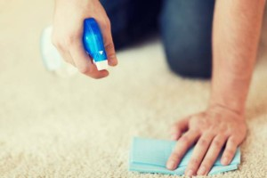 The Ultimate Carpet Stain Guide